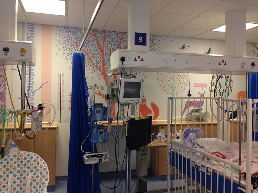 Children S Critical Care Artlink Oxford University